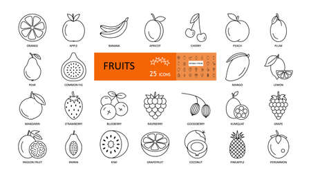 Fruit and berry. Vector thin icons with editable stroke. Sweet fruits of apple, orange, apricot, peach, kiwi, papaya, strawberry, grape, mango, persimmon mandarin and others. Flat illustration.
