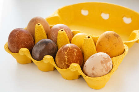 side view shot of a yellow box with eight original, unique colorful dragon or dinosaur looking like chicken Easter eggs, dyed with natural products (red wine, tea, coffee, carrot, turmeric, soy sauce)