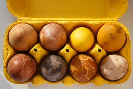 top view shot of a yellow box with eight original, unique colorful dragon or dinosaur looking like chicken Easter eggs, dyed with natural products (red wine, tea, coffee, carrots, turmeric, soy sauce) 免版税图像