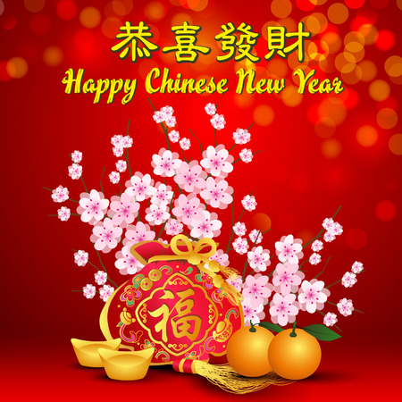 Chinese Lunar New Year with Background