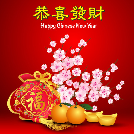 chinese new year: Chinese New Year Illustration