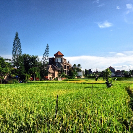 Gorgeous greenish scene in Bali