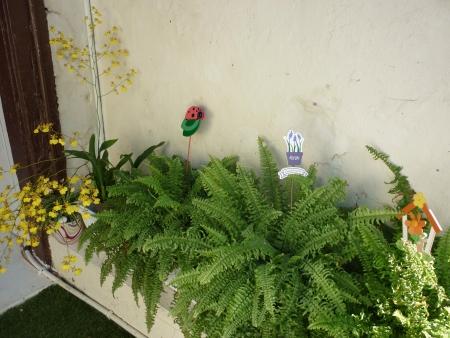 Plants corner