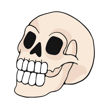 menschlicher Schädel Cartoon-Vektor-Illustration-Motiv-Set. Handgezeichnete isolierte Knochenelemente Clipart für Natur-Blog, Naturgeschichte Knochenskelett-Grafik, Anatomie-Bildungs-Web-Schaltflächen.