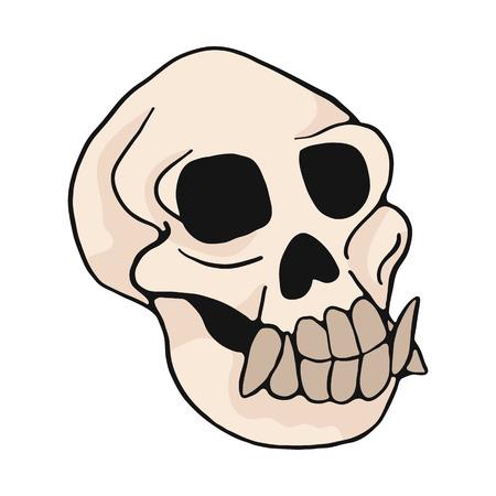 Ensemble de motifs d'illustration de vecteur de dessin animé de crâne de singe animal. Clipart d'éléments d'os de singe isolés dessinés à la main pour le blog de la nature, graphique de squelette d'os d'histoire naturelle, boutons Web d'éducation à l'anatomie.