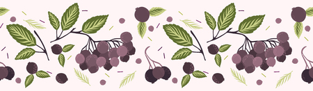 Realistic aronia berry vector illustration Seamless repeating border pattern. Hand drawn black chokeberries, leaf. Juicy natural antioxidants. Nutritional superfruits background. Packaging design.
