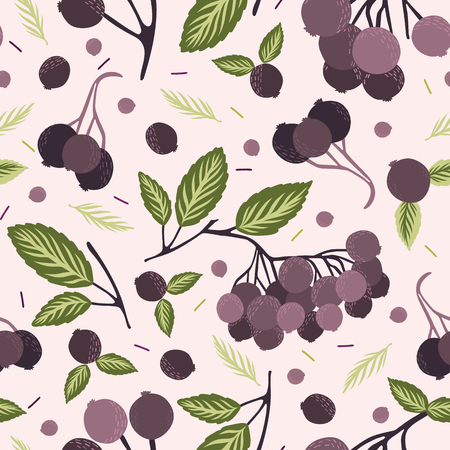 Realistic aronia berry vector illustration Seamless repeating pattern. Hand drawn black chokeberries, leaf. Juicy natural antioxidants. Nutritional superfruits background. Growing packaging design.