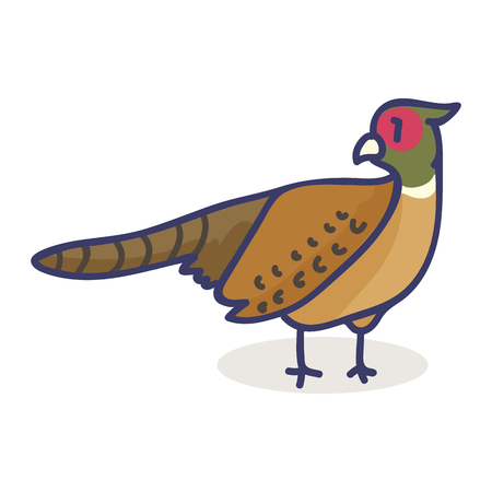 Cute pheasant cartoon vector illustration motif set. Hand drawn isolated bird elements clipart for woodland blog, forest animal graphic,nature web buttons.