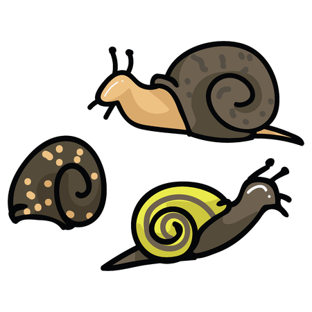 Cute snail and shell cartoon vector illustration motif set. Hand drawn garden pest blog icons.
