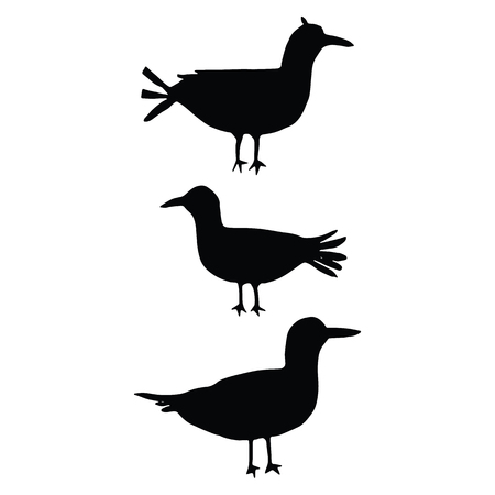 Cute bird silhouette cartoon vector illustration motif set. Hand drawn avian life elements clipart for birdwatching.