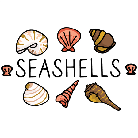 Cute seashell text cartoon vector illustration motif set. Hand drawn isolated marine life elements. Clipart for ocean text blog, mollusk graphic, nautilus web buttons. Illustration