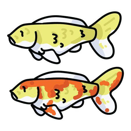 Cute decorative koi fish vector illustration. Oriental pond life clip art.  Çizim