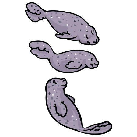 Cute group of light grey seals. Ocean mammal sea life clipart.