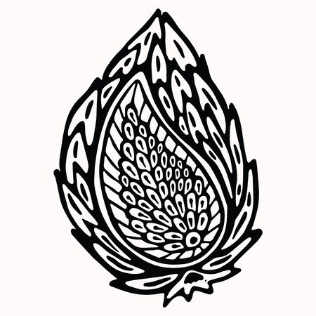 Paisley nature folk art graphic design element. Hand drawn nordic linocut block print motif. Black folkloric clip art paper cutout. Bohemian indian style. Nordic leaf tattoo. Line art flourish outline