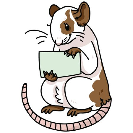 Cute pet rat holding a sign vector illustration. Rodent clipart.
