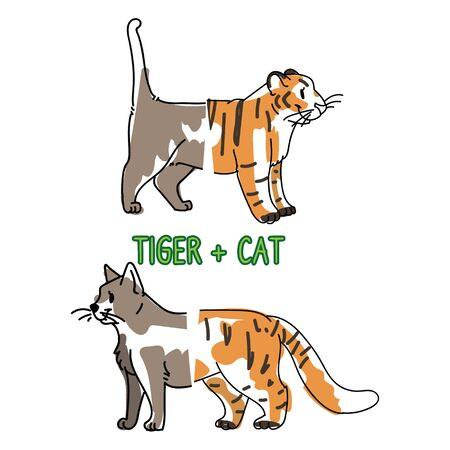 Childish tiger and pet cat animal splice vector illustration. Hand drawn doodle inked wildlife animal creature mixture, trendy kitty monster clipart.