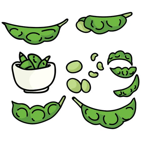 Cute edamame soy bean illustration. Hand drawn Japanese light snack food clipart.