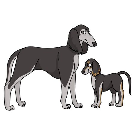 Cute cartoon saluki and puppy dog breed vector clipart. Pedigree kennel doggie breed for dog lovers. Purebred domestic for pet parlor illustration mascot. Isolated canine borzoi hound.