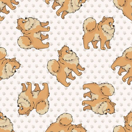 Hand drawn cute pomeranian breed dog seamless pattern. Purebred pedigree domestic dog on paw background. Illustration
