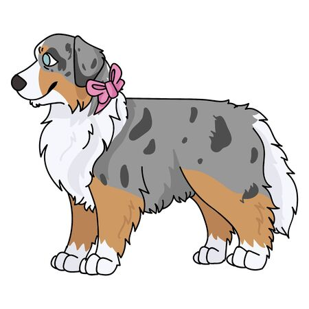 Cute cartoon australian shepherd with pink bow vector clipart. Pedigree kennel doggie breed for dog lovers. Purebred domestic puppy for pet parlor illustration mascot. Isolated canine English.