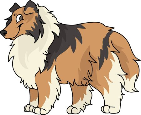 Cute cartoon rough collie dog breed vector clipart. Pedigree kennel sheepdog for dog lovers. Purebred domestic puppy for pet parlor illustration mascot. Isolated canine fluffy.