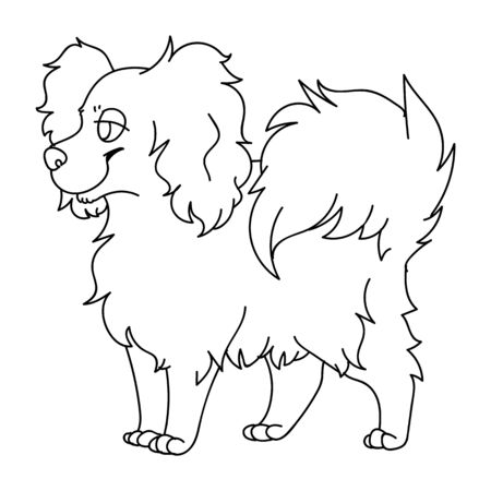 Cute cartoon papillon dog monochrome lineart vector clipart. Pedigree kennel puppy breed for dog lovers. Purebred domestic puppy for pet parlor illustration. Isolated canine fluffy. EPS 10.