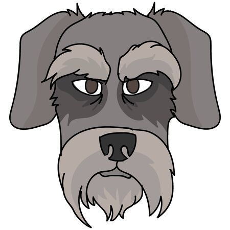 Cute cartoon schnauzer dog face vector clipart. Pedigree kennel doggie puppy breed for dog lovers. Purebred domestic terrier for pet parlor illustration mascot. Isolated canine English hunting breed.