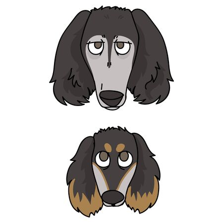 Cute cartoon saluki puppy and dog face breed vector clipart. Pedigree kennel doggie breed for dog lovers. Purebred domestic for pet parlor illustration mascot. Isolated canine borzoi hound. EPS 10. Illustration