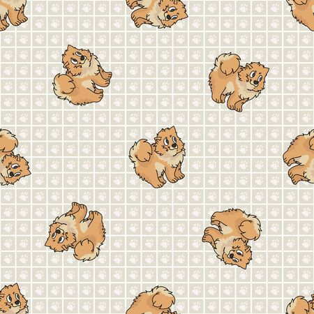 Hand drawn cute pomeranian puppy breed dog seamless vector pattern. Purebred pedigree domestic dog on paw background. Dog lover spitz pet all over print. Kennel pooch. EPS 10.