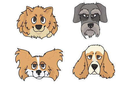 Cute cartoon dog breed set vector. Pedigree kennel spitz, papillon and schnauzer for dog lovers. Purebred cocker spaniel illustration. Isolated hunting hound.