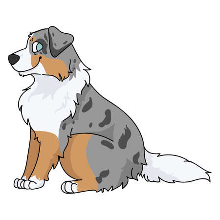 Cute cartoon Australian Shepherd sitting dog vector clipart. Pedigree kennel doggie breed for kennel club. Purebred domestic puppy training for pet parlor illustration mascot. Isolated canine hunting.
