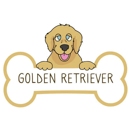 Cute cartoon Golden Retriever on collar dog tag vector clipart. Purebred doggy identification medal for pet id. Domestic dog for pet pooch.