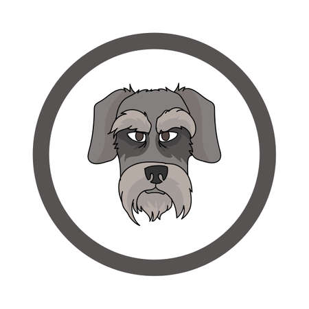 Cute cartoon Schnauzer face in circle dog vector clipart. Pedigree kennel doggie breed for kennel club. Purebred domestic dog training for pet parlor. Illustration mascot. Isolated canine.