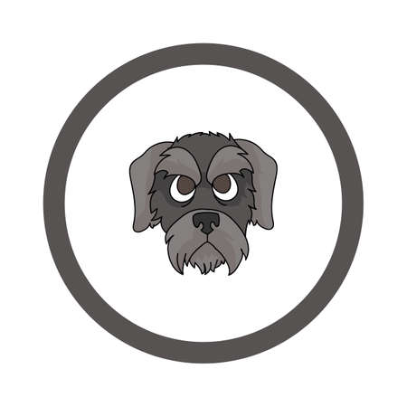 Cute cartoon Schnauzer face in circle puppy vector clipart. Pedigree kennel doggie breed for kennel club. Purebred domestic dog training for pet parlor. Illustration mascot. Isolated canine.