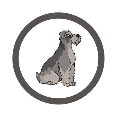 Cute cartoon Schnauzer in circle dog vector clipart. Pedigree kennel doggie breed for kennel club. Purebred domestic dog training for pet parlor. Illustration mascot. Isolated canine.