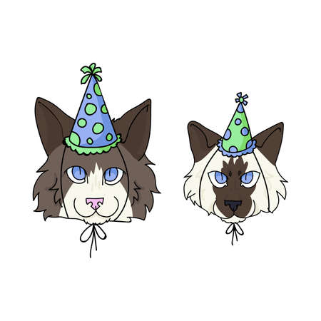 Cute cartoon ragdoll kitten and cat face with party hat vector clipart. Pedigree kitty breed for cat lovers. Celebration for pet parlor illustration mascot. 矢量图像