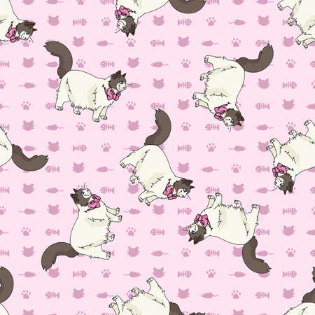 Cute cartoon Ragdoll cat with pink bow seamless vector pattern. Pedigree kitty breed domestic kitten background. Cat lover purebred all over print.