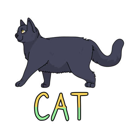 Cute cartoon British shorthair cat with text vector clipart. Pedigree kitty breed for cat lovers. Purebred domestic kitten for pet parlor illustration mascot. Isolated feline housecat.