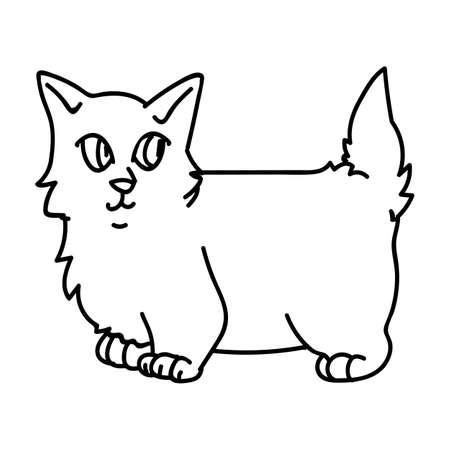 Cute cartoon munchkin kitten lineart vector clipart. Pedigree kitty breed for cat lovers. Purebred grey domestic kitten for monochrome pet parlor illustration mascot. Isolated feline housecat. Vettoriali