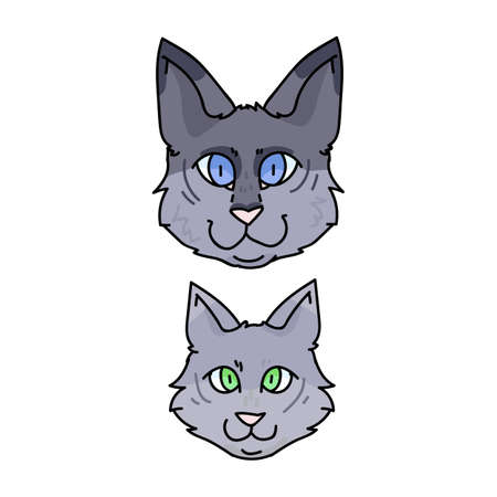 Cute cartoon munchkin cat face set vector clipart. Pedigree kitty breed for cat lovers. Purebred grey domestic kitten for pet parlor illustration mascot. Isolated feline housecat. Ilustração Vetorial