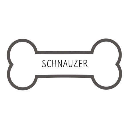 Cute cartoon Schnauzer text on collar dog tag vector clipart. Purebred doggy identification medal for pet id. Domestic dog for pet pooch.