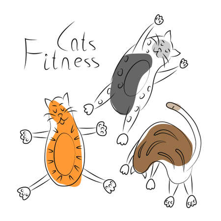 Collection of funny fat cats engaged in sports, fitness, yoga. Simple linear illustration of pets with partial fill. Bright print, logo, emblem, label, badge, icon for vet clinic, children's clothing Logo