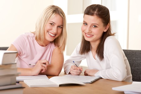 Two friends studying together home Stock Photo - 4570496