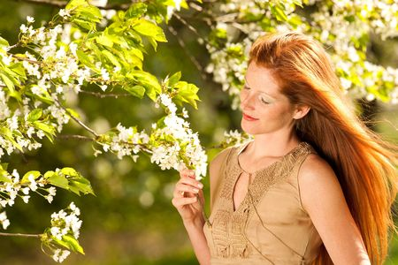 long red hair woman: Long red hair woman standing under blooming cherry tree on a sunny day