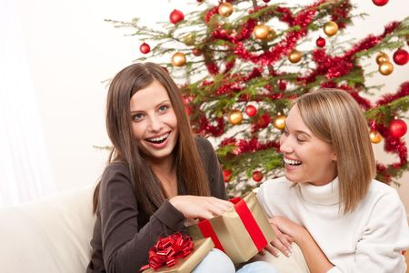Two women unpacking Christmas present in front of tree photo