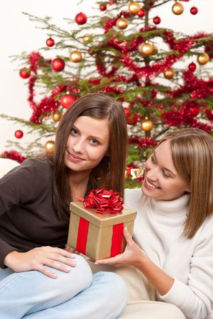Two smiling women with Christmas present in front of tree photo