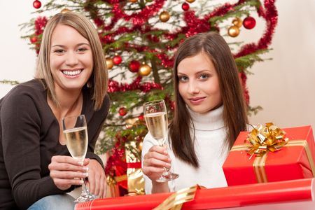 Two young woman with champagne and Christmas tree and present Stock Photo - 5712901