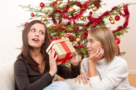 Two smiling women with Christmas present in front of tree Stock Photo - 5712896