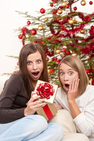 Two smiling women with Christmas present in front of tree Stock Photo - 5712898