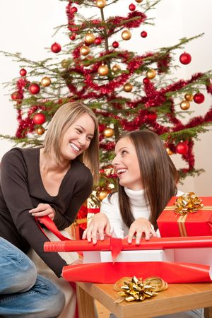 Two women packing Christmas present in front of tree Stock Photo - 5714158